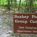 The group campsite is for special group use only. For reservations and information, call the park office.- Leesylvania State Park Campground