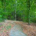 Path to various spots in the park.- Whitten Park