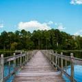 Looking east down the large fishing pier.- Whitten Park