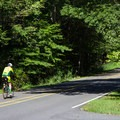 The park has lanes designated for road biking. - Prince William Forest Park