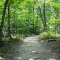 North Valley Trail.- Prince William Forest Park