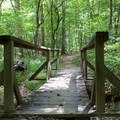 A bridge along the South Valley Trail.- Prince William Forest Park