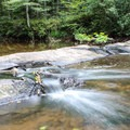 Cascading water on the South Fork of Quantico Creek- Prince William Forest Park