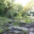 River Rock Scramble.- Scott's Run Nature Preserve