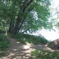 Trail connector via the Potomac Heritage Trail.- Scott's Run Nature Preserve