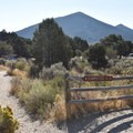 Walk-in sites at City of Rocks.- City of Rocks Campground