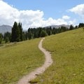 The trail to Lost Lake in August.- Lost Lake Hike