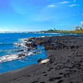 A turtle on the black sand.- Punalu'u Black Sand Beach Campground