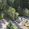 The fork in the trail where you can head to Secret Falls, Red Pine or White Pine Lakes.- Lower Red Pine Lake Trail
