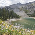 The last of the wildflowers all the way into mid-September.- Lower Red Pine Lake Trail