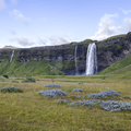 Seljalandsfoss can be seen from the road.- Seljalandsfoss