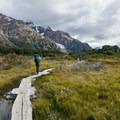 Boardwalks near Poincenot Campground.- Los Glaciares National Park
