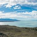 The steppe above Lago Viedma.- Los Glaciares National Park