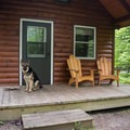 Lady Slipper Cabin is dog friendly.- Woodford State Park Campground