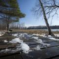 Boardwalk on the Island Trail.- Ludington State Park