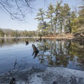Reflections along the Lost Lake Trail.- Ludington State Park