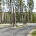 Madison has the only RV dump station in the park.- Madison Campground