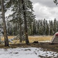 Some of the tent sites in Norris Campground have lovely views of the field.- Norris Campground
