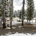 Walk-in tent sites at Norris Campground.- Norris Campground