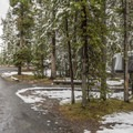 Typical sites in Norris campground.- Norris Campground