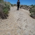 Hike along the wash, which is a great reference point for orientation.- Bisti/De-na-zin Badlands