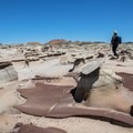"""Formations in the """"Picnic Tables"""" area.- Bisti/De-na-zin Badlands"""