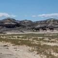 Horseback riding is allowed in the Bisti/De-Na-Zin Wilderness Area.- Bisti/De-na-zin Badlands