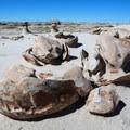 Cracked Eggs, a rock formation in Bisti/De-Na-Zin Wilderness Area.- Bisti/De-na-zin Badlands