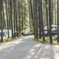 Sections of Apgar Campground can get quite congested.- Apgar Campground