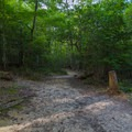 Continuing southeast toward the nature center.- Gorge Overlook Trail