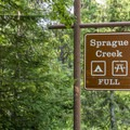 Sprague Creek Campground.- Sprague Creek Campground
