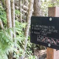 Rocky Point Trail runs right through the campground.- Fish Creek Campground
