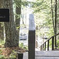 There is a good trail to Lake McDonald and a swimming beach.- Fish Creek Campground