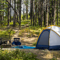 Typical campsite at Fish Creek.- Fish Creek Campground