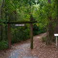 The entrance to the Island Trail.- Trap Pond State Park