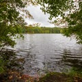 A view out over the pond.- Trap Pond State Park