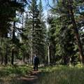 The start of the Thunderer Trail.- The Thunderer
