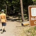 Trailhead for Upper McDonald Creek.- Upper McDonald Creek Trail