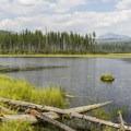 Lower Howe Lake.- Howe Lake Trail