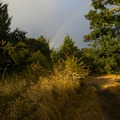 A rainbow over the Bald Hill Natural Area.- Bald Hill Natural Area