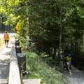 A short part of the loop follows the road.- Johns Lake Loop Hike