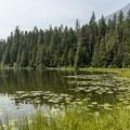 Johns Lake.- Johns Lake Loop Hike
