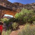 Beautiful desert varnish lines the stone.- Kachina Bridge Trail