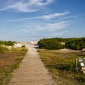 A skateboard rests against a bike rack in one of the oceanside camping loops.- Assateague Island Campground