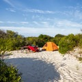 A walk-in oceanside campsite.- Assateague Island Campground