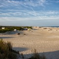 An elevated look at the oceanside campground.- Assateague Island Campground