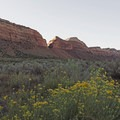 Further down the road is a BLM camping area.- Comb Ridge Monocline