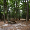 An example of a campsite.- Trap Pond State Park Campground