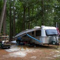 The campground host.- Trap Pond State Park Campground