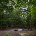 A walk-in campsite.- Trap Pond State Park Campground